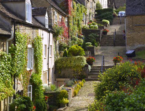 Neighbourhood, Vegetation, Town, House, Street, Building, Wall, Tree, Garden, Alley,