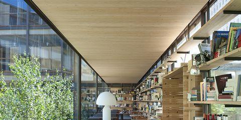 Interior design, Table, Furniture, Shelf, Shelving, Ceiling, Hardwood, Plywood, Interior design, Shade,