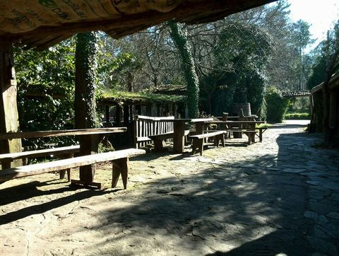 Tree, Shade, Sunlight, Tints and shades, Outdoor furniture, Nature reserve, Outdoor bench, Park, Shadow, Outdoor table,