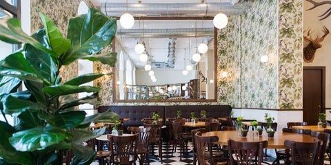 Table, Furniture, Interior design, Restaurant, Ceiling, Chair, Light fixture, Hardwood, Hall, Design,
