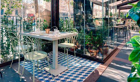 Table, Flowerpot, Outdoor table, Tile, Houseplant, Tile flooring, Restaurant, Outdoor furniture, Outdoor structure, Courtyard,