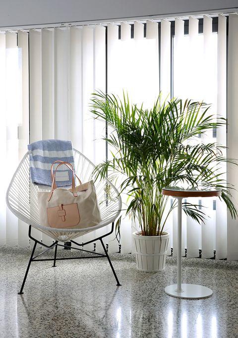 Floor, Interior design, Design, Flowerpot, Vase,