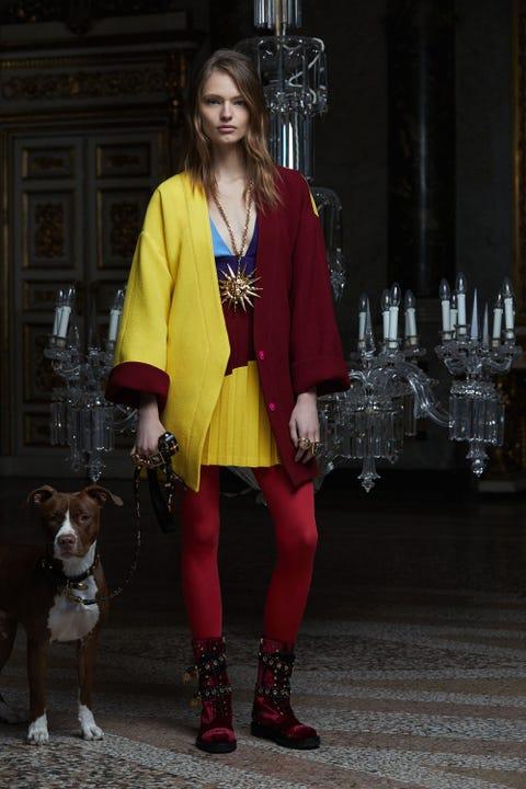 Clothing, Collar, Dog, Carnivore, Style, Dress, Fashion, Dog breed, Street fashion, Fashion model,