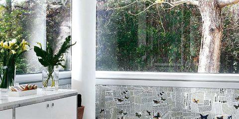Room, Plumbing fixture, Glass, Interior design, Bathtub accessory, Fluid, Flowerpot, Fixture, Interior design, Bathtub,