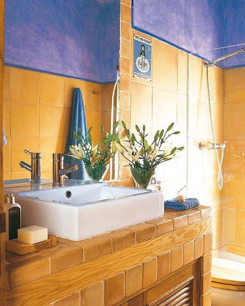 Property, Room, Interior design, Wall, Interior design, Majorelle blue, Flowerpot, Tile, Houseplant, Tap,