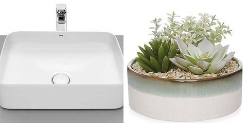 Sink, Flowerpot, Plant, Bathroom sink, Bathroom accessory, Soap dispenser,