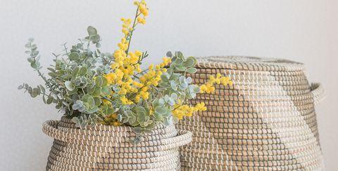 Vase, Flowerpot, Wicker, Storage basket, Table, Plant, Basket, Beige, Still life, Home accessories,