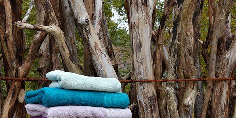 Wood, Branch, Textile, Purple, Serveware, Teal, Lavender, Linens, Turquoise, Aqua,
