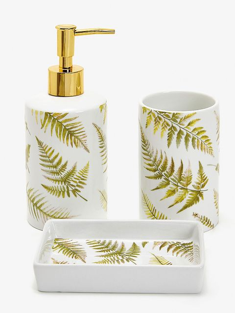 Soap dispenser, Bathroom accessory, Feather, Vascular plant, Soap dish, Fern, Plant, Interior design, Toothbrush holder,