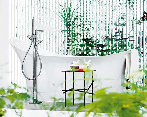 Interior design, Wall, Illustration, Paint, Transparent material, Herb, Drawing,