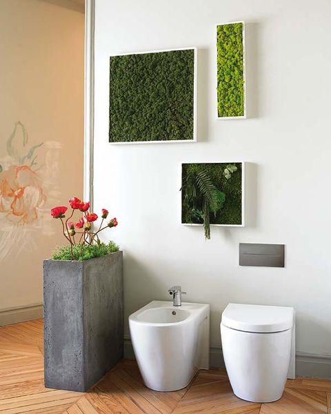 Room, Wall, Interior design, Petal, Plumbing fixture, Ceramic, Interior design, Household supply, Peach, Porcelain,