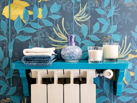 Blue, Turquoise, Green, Shelf, Aqua, Teal, Room, Furniture, Table, Wall,