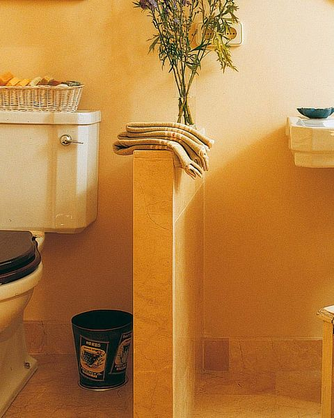 Wall, Interior design, Artifact, Still life photography, Toilet seat, Houseplant, Household supply, Toilet,