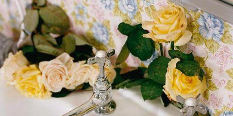 Yellow, Petal, Flower, Bouquet, Cut flowers, Flowering plant, Rose family, Rose order, Garden roses, Hybrid tea rose,