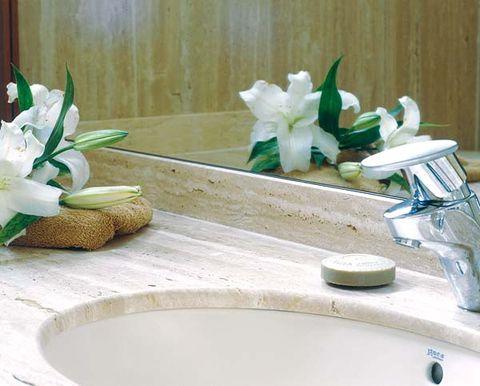 Petal, Flower, Plumbing fixture, Bathroom sink, Tap, Cut flowers, Sink, Ceramic, Interior design, Plumbing,