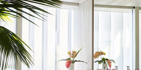 Interior design, Room, Floor, Interior design, House, Fixture, Home, Flower Arranging, Vase, Arecales,