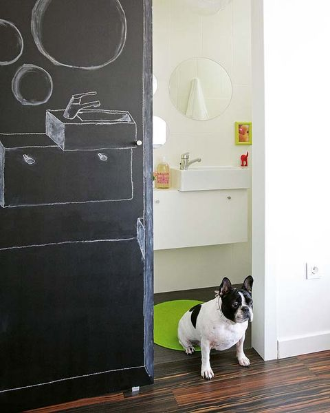 French bulldog, Canidae, Dog, Room, Floor, Door, Furniture, Non-Sporting Group, Table, Boston terrier,