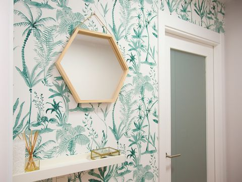 Green, Wall, Room, Wallpaper, Leaf, Interior design, Mirror, Tree, Shelf, House,