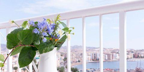 Glass, Flower, Table, Real estate, Petal, Flowerpot, Outdoor table, Vase, Cut flowers, Flower Arranging,