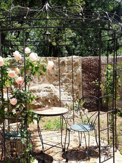 Table, Petal, Garden, Outdoor table, Botany, Rose order, Shrub, Coffee table, Shade, Rose family,