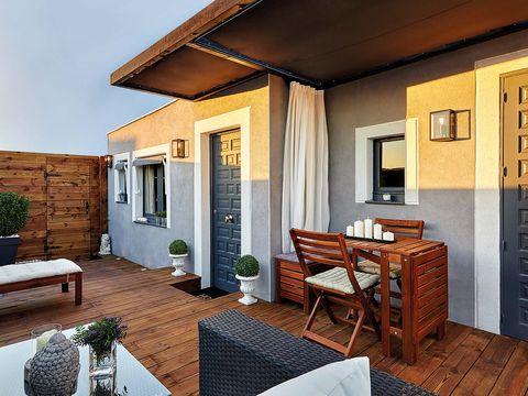 Wood, Property, Room, Wall, Interior design, Floor, Real estate, Flowerpot, Furniture, Home,