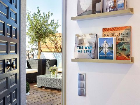 Room, Wall, Interior design, Home, Interior design, Houseplant, Paint,
