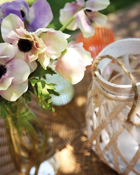 Petal, Flower, Flowering plant, Insect, Natural material, Invertebrate, Still life photography, Ring, Cut flowers, Wedding ceremony supply,