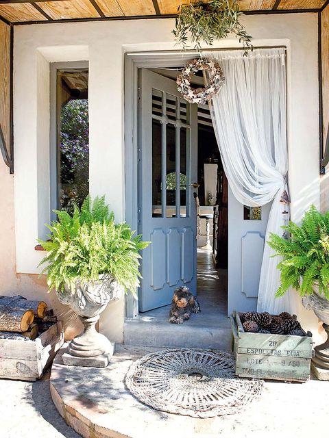 Flowerpot, House, Interior design, Door, Real estate, Fixture, Interior design, Home, Home door, Molding,