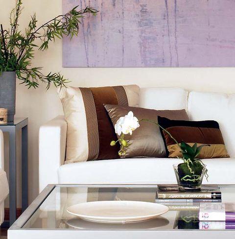 Interior design, Room, Dishware, Living room, Couch, Wall, Serveware, Furniture, Interior design, Home,