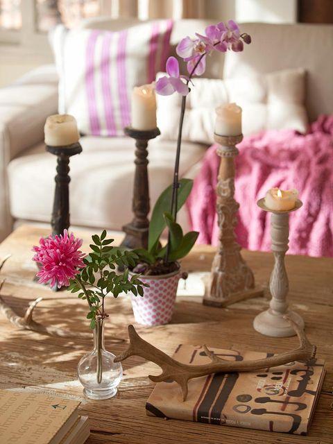 Purple, Flower, Petal, Pink, Room, Interior design, Lavender, Magenta, Violet, Interior design,