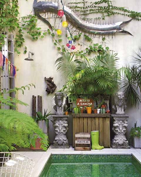 Green, Property, Building, Botany, Wall, Interior design, House, Room, Plant, Tree,