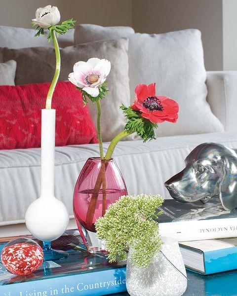 Petal, Flower, Interior design, Flowering plant, Artifact, Cut flowers, Carnivore, Flower Arranging, Vase, Centrepiece,
