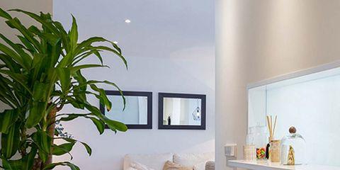 Wood, Floor, Interior design, Room, Flooring, Wall, Couch, Hardwood, Wood flooring, Laminate flooring,