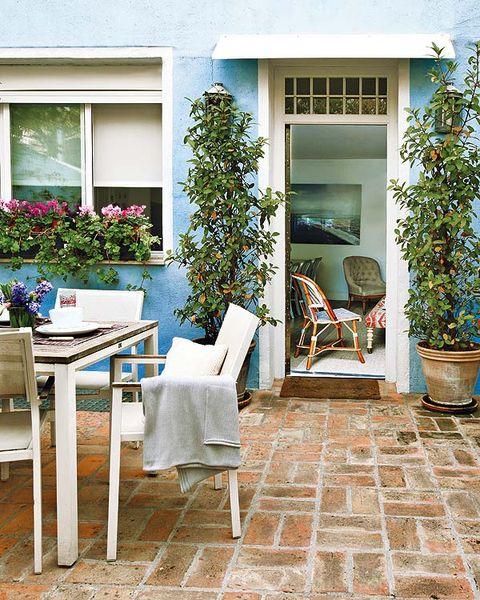 Plant, Flowerpot, Furniture, Fixture, Outdoor table, Outdoor furniture, Houseplant, House, Interior design, Shrub,
