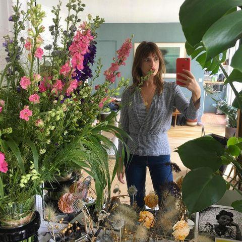 Plant, Flower, Jeans, Flowerpot, Denim, Shrub, Floristry, Waist, Flower Arranging, Boot,