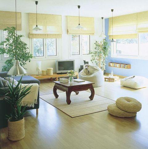 Room, Interior design, Plant, Green, Floor, Flooring, Living room, Furniture, Table, Home,