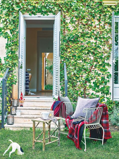 Green, Furniture, House, Chair, Home, Door, Outdoor furniture, Porch, Dog breed, Backyard,