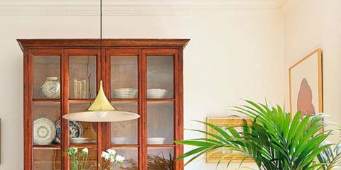 Flowerpot, Plant, Wood, Interior design, Room, Table, Flooring, Hardwood, Floor, Chair,