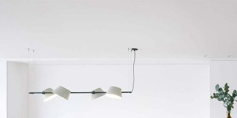 Wood, Flowerpot, Room, Table, Floor, Flooring, Furniture, Interior design, Wall, Coffee table,