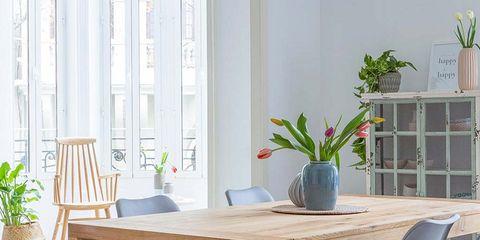 Wood, Flowerpot, Plant, Table, Furniture, Interior design, Room, Flooring, Floor, Interior design,