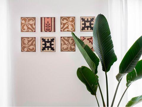 Leaf, Green, Botany, Plant, Houseplant, Flower, Organism,