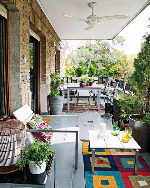 Flowerpot, Plant, Interior design, Table, Ceiling, Furniture, Interior design, Home, Door, Basket,