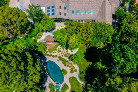 Aerial photography, Green, Bird's-eye view, Vegetation, Tree, Architecture, Real estate, Estate, Residential area, Leaf,