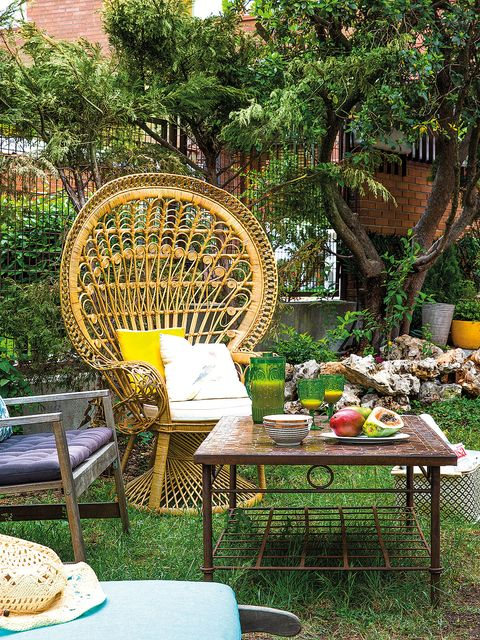 Wicker, Furniture, Table, Garden, Botany, Chair, Outdoor furniture, Yard, Outdoor table, Backyard,
