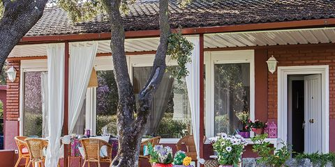 Furniture, Outdoor furniture, Real estate, Table, Door, Woody plant, Flowerpot, Chair, Garden, Home,
