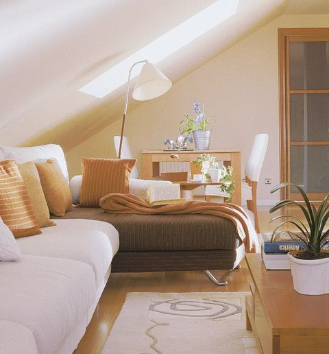 Flowerpot, Lighting, Room, Interior design, Floor, Textile, Flooring, Wall, Lampshade, Bedding,