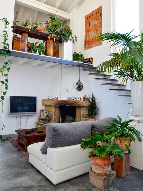 Living room, Room, Property, Furniture, Interior design, Green, Houseplant, House, Building, Wall,