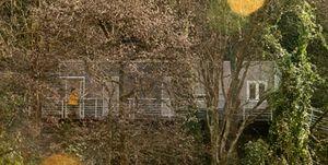 Una casa entre los árboles
