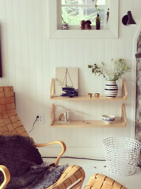 Room, Interior design, Interior design, Flowerpot, Home accessories, Houseplant, Fur, Shelving, Natural material, Pottery,