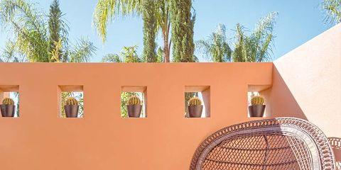 Wall, Chair, Wicker, Arecales, Palm tree, Carpet, Armrest, Hacienda,
